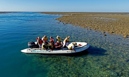 coral-expeditions-montgomery-reef-doubtful-bay