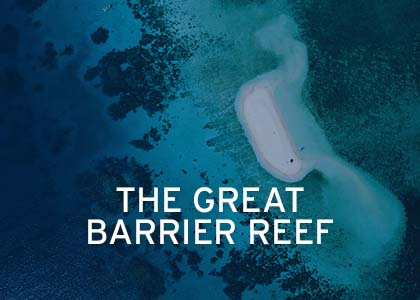 Great Barrier Reef Coral Expeditions Hover