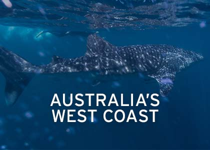 Australia's West Coast Coral Expeditions Hover