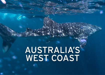 Australia's West Coast Coral Expeditions Normal