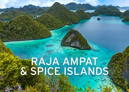 Raja Ampat & Spice Islands Coral Expeditions Normal