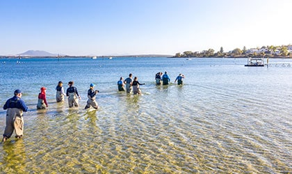 Coffin-Bay-Oysters-South-Australia