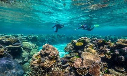 Mackay-Reef-Coral-Expeditions-Cruise